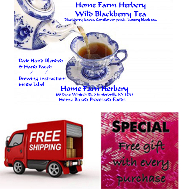 FREE Gift and FREE shipping when you order our Hand Blended Wild Blackberry Tea now!