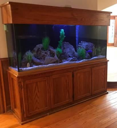 180 Gallon Aquarium for Sale for Moving