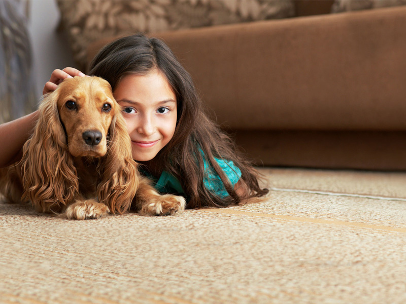 Rug Cleaning Services Near Clinton CT