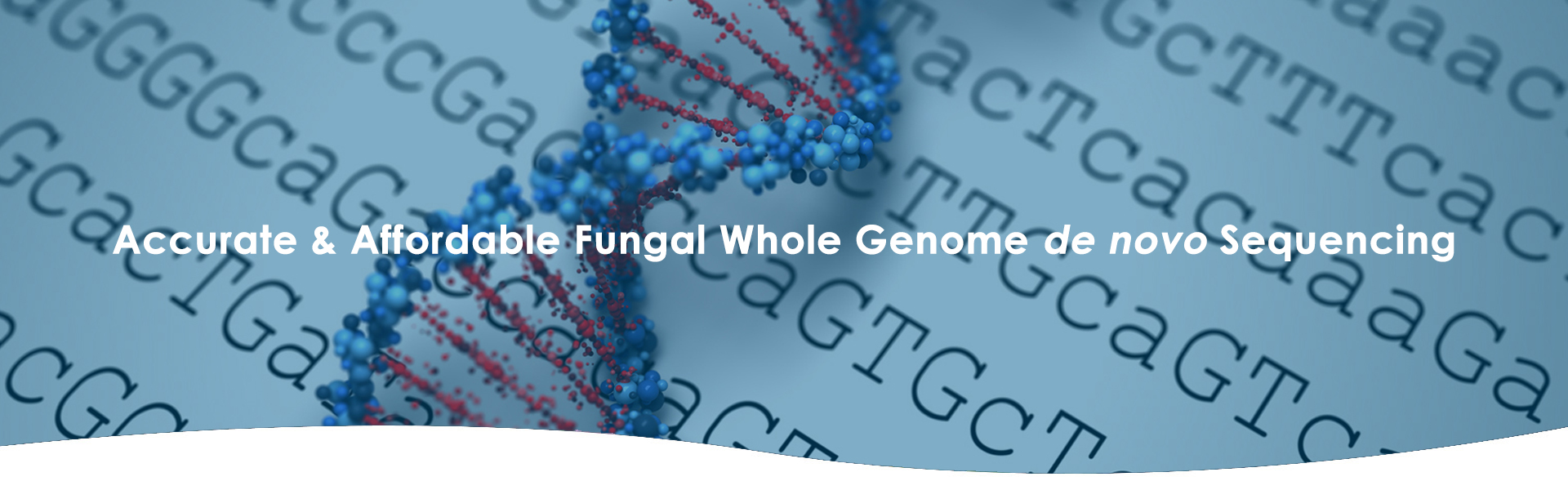 fungal genome sequencing