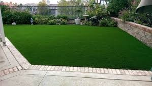 Get affordable Truf lawn