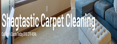 Shagtastic Carpet Cleaning