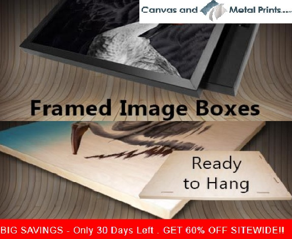Print your Picture with the Best Online Canvas Printing