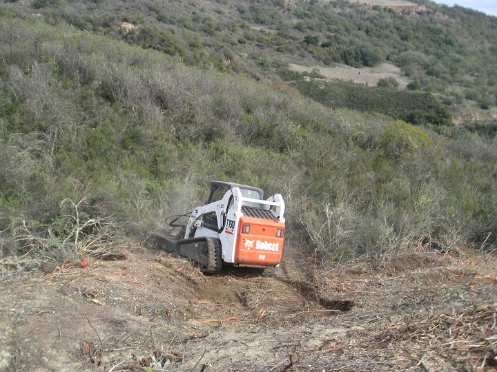 Bobcat Land Clearing Brush Weed Mowing Services