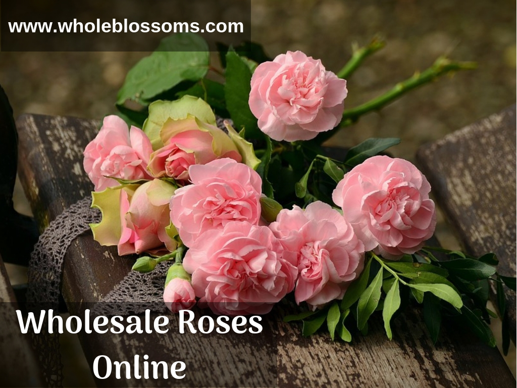 Buy Roses Online in Bulk at the Cheap Wholesale Price