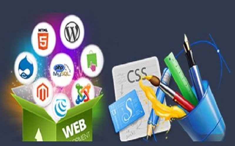 Web Design Services in Florida