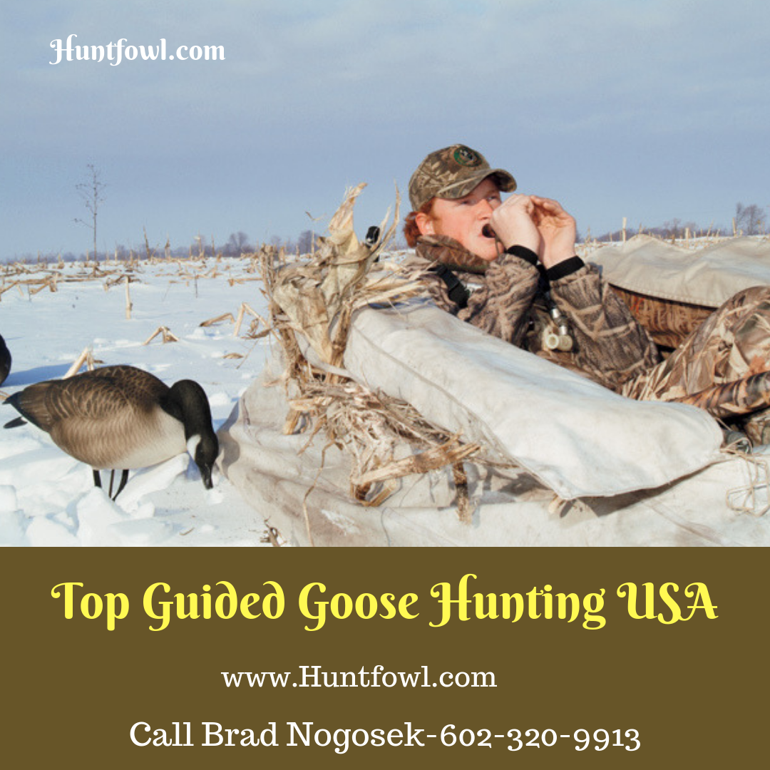 Top Guided Goose Hunting USA