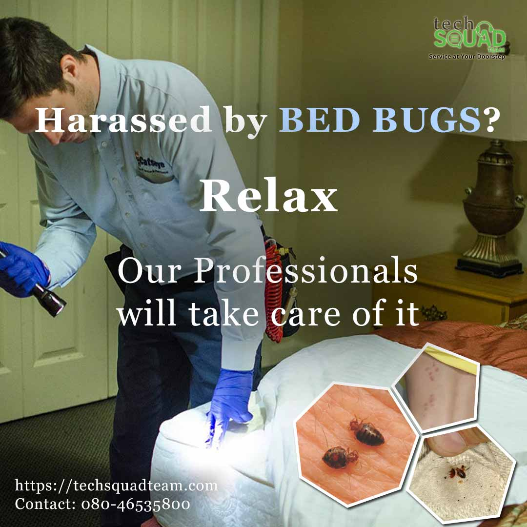 Book bed bug pest control services Bangalore
