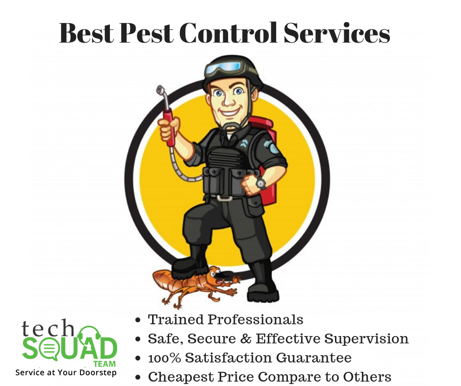 Pest control service for home and office Bangalore