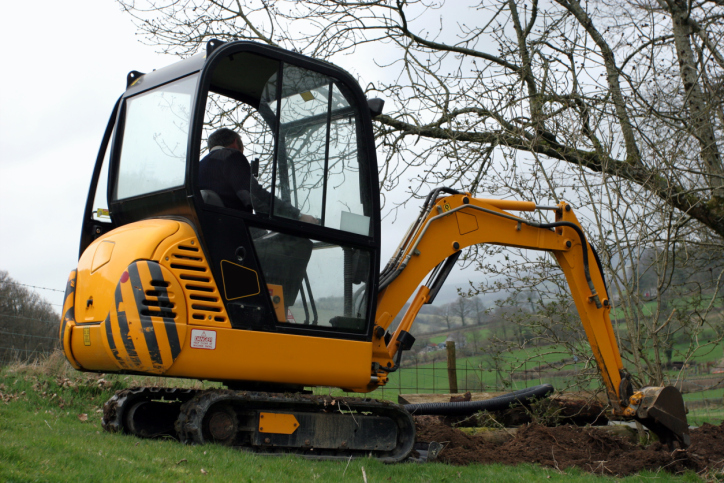 Cheapest stump removal & Grinding Murrysville