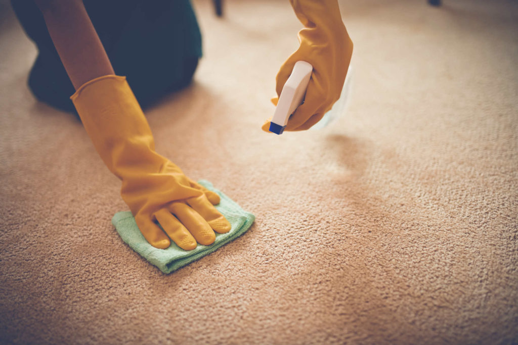 Custom Cleans Carpet