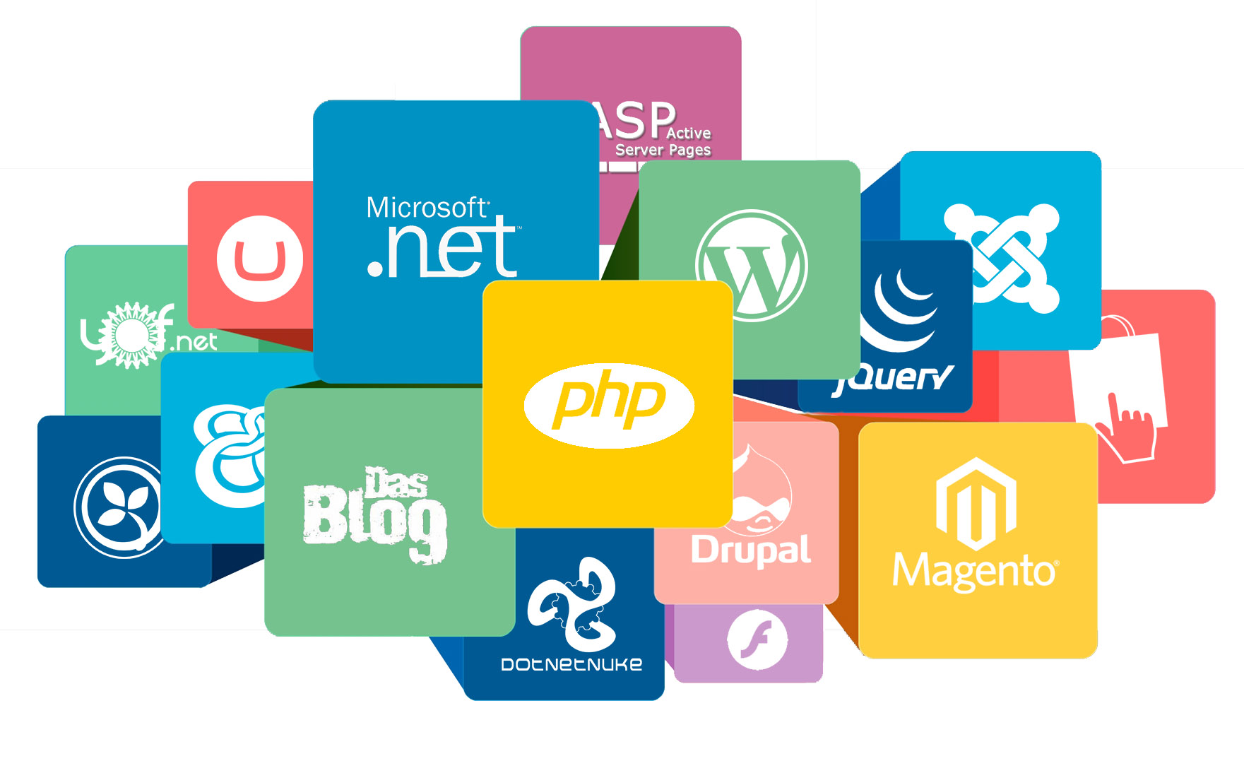 Website Development Company in Delhi NCR, Web Designing Company India