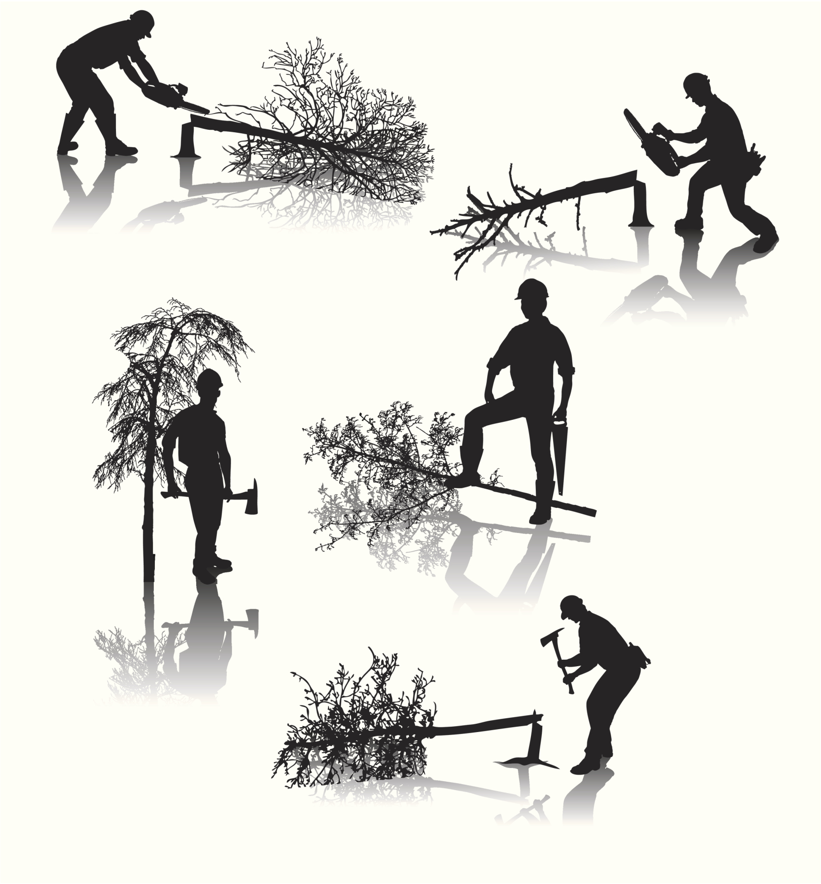 Nelson Tree Solutions