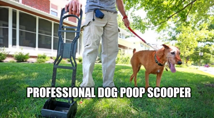 Get Professional Dog Poop Scooper By Ecoscooper