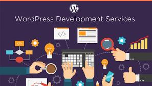 Affordable wordpess web design and developemnt service
