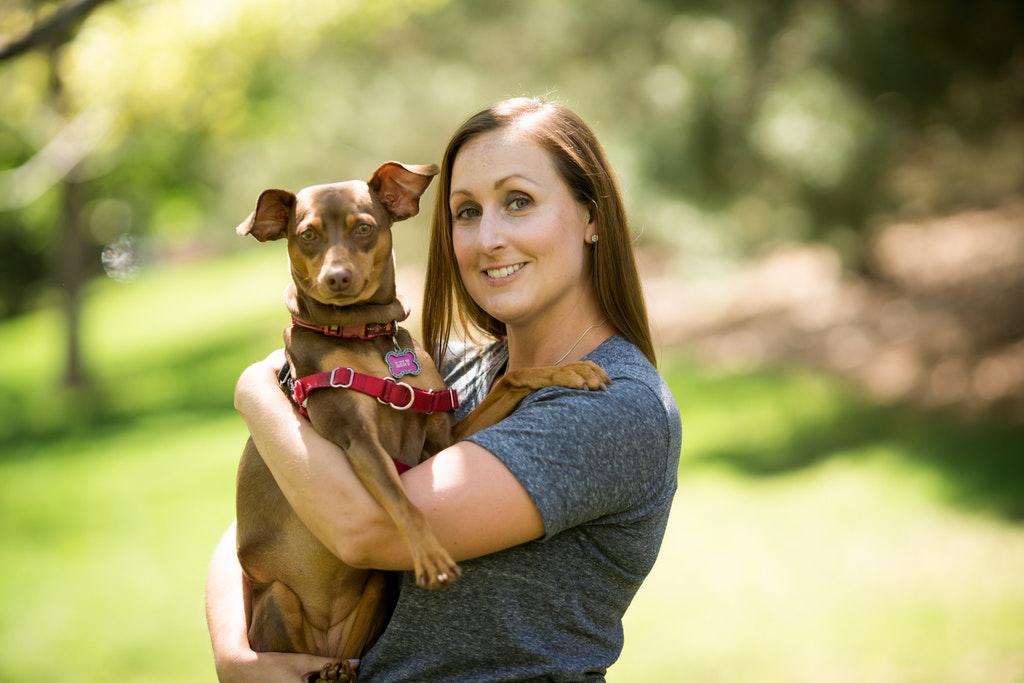 Professional Dog Walker & Sitter