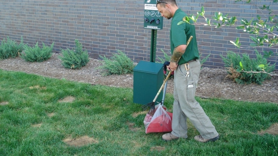 Eco-Friendly Dog Poop Removal Services
