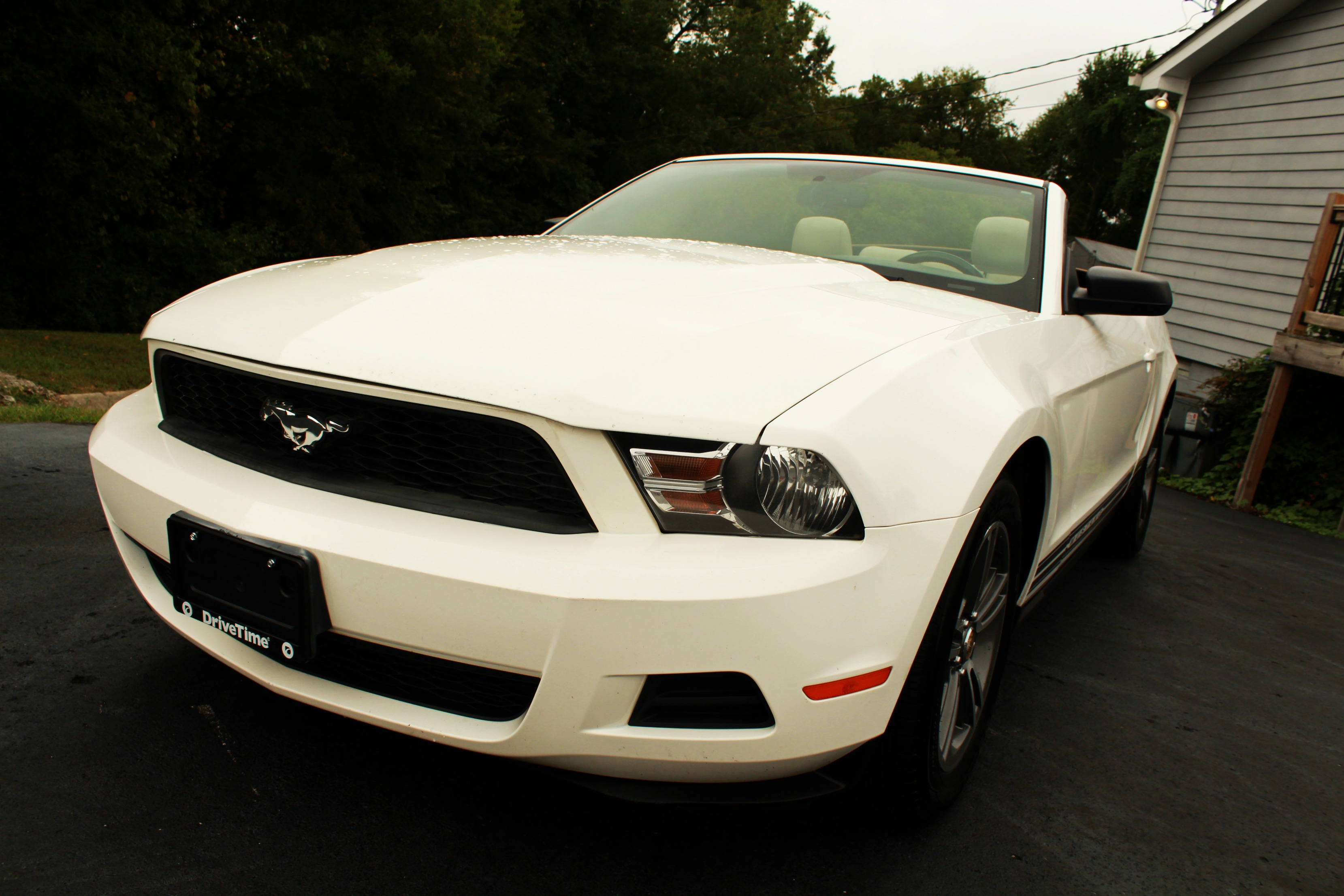 2010 Ford Mustang Base