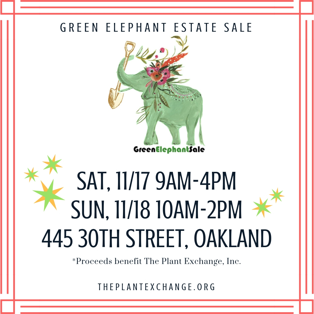 Green Elephant Estate Sale