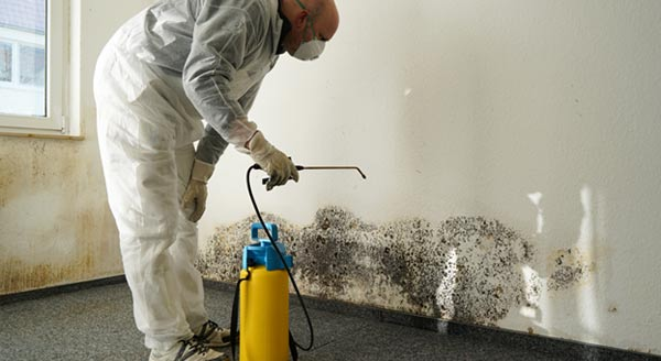 Mold Inspection Brooklyn | Fire Damage Company NYC | Water Leak Restoration NYC