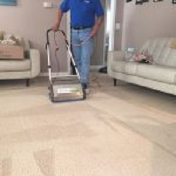 Top Carpet Cleaner