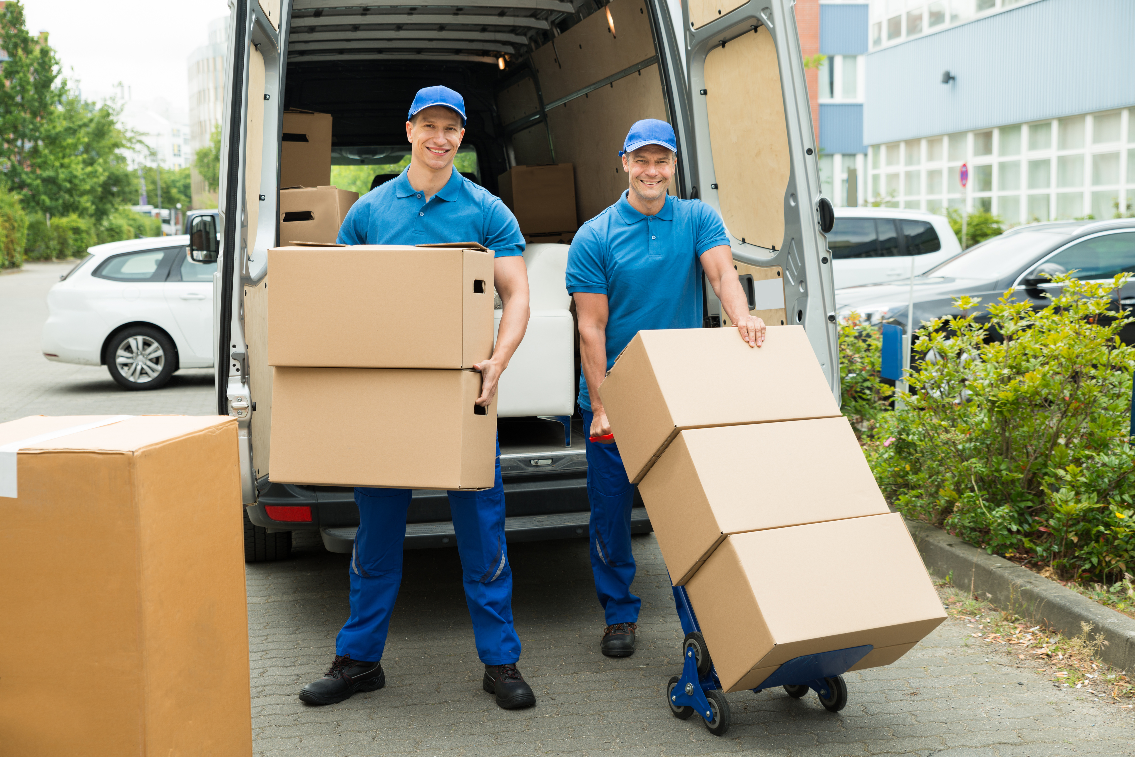 Elymar Moving Services
