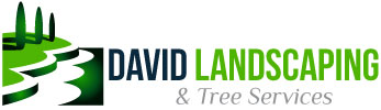 David Landscaping and Tree Services