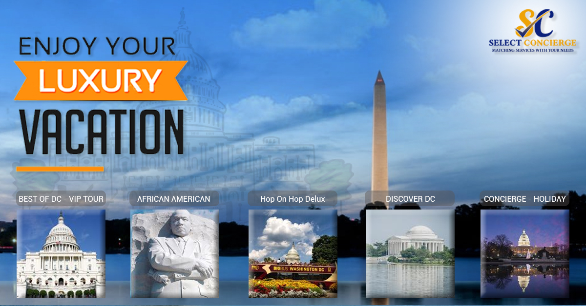 Book the best popular tours in Washington Dc
