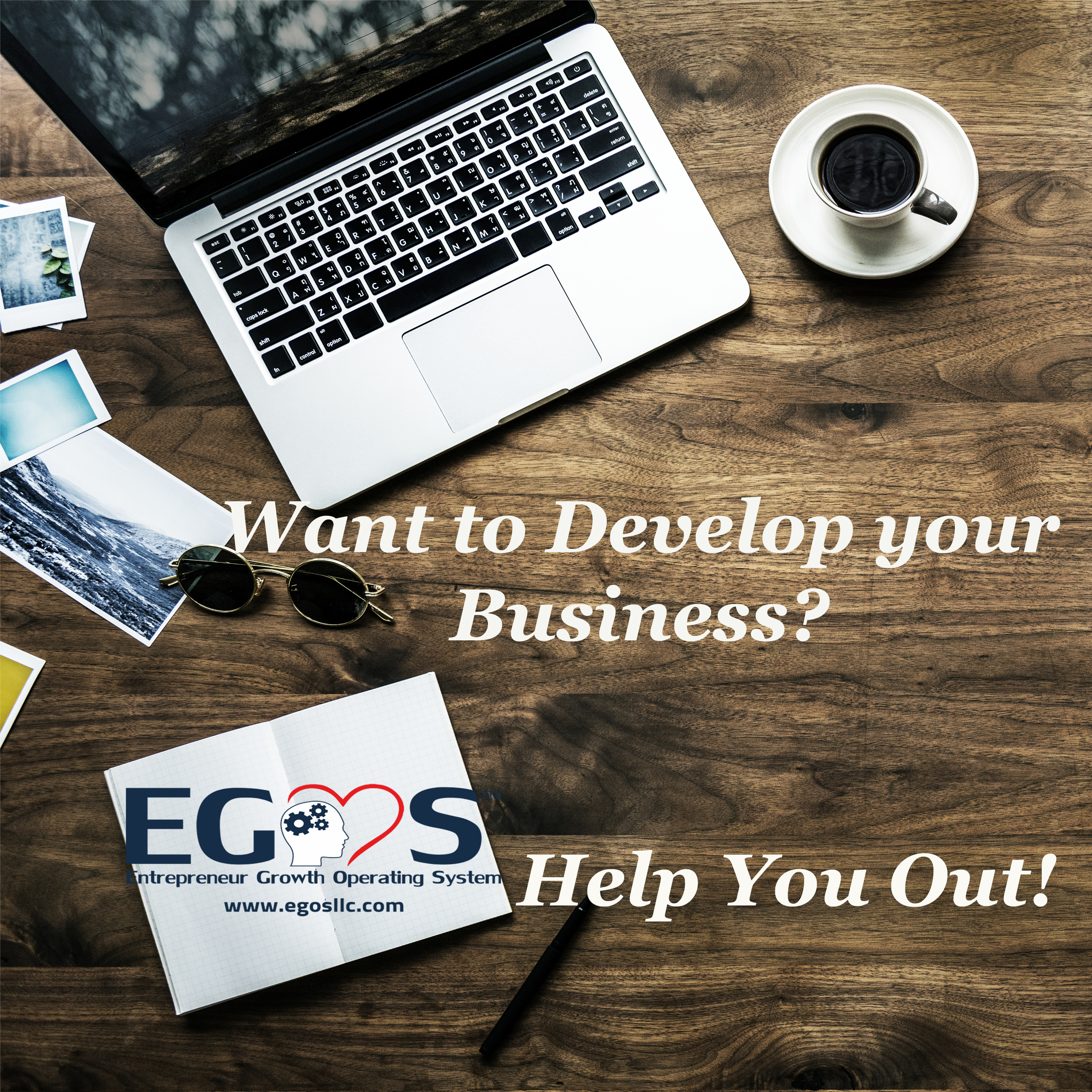 Want to develop your business - Business Coach - Egos
