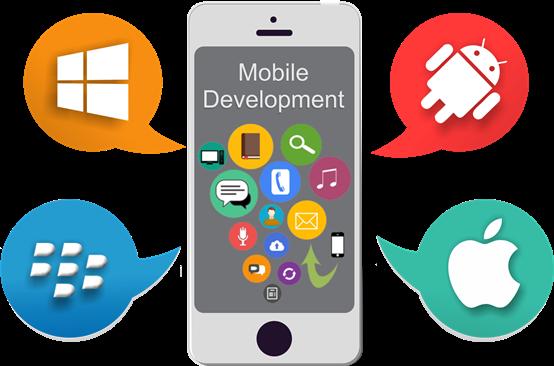 Website development solution In Florida