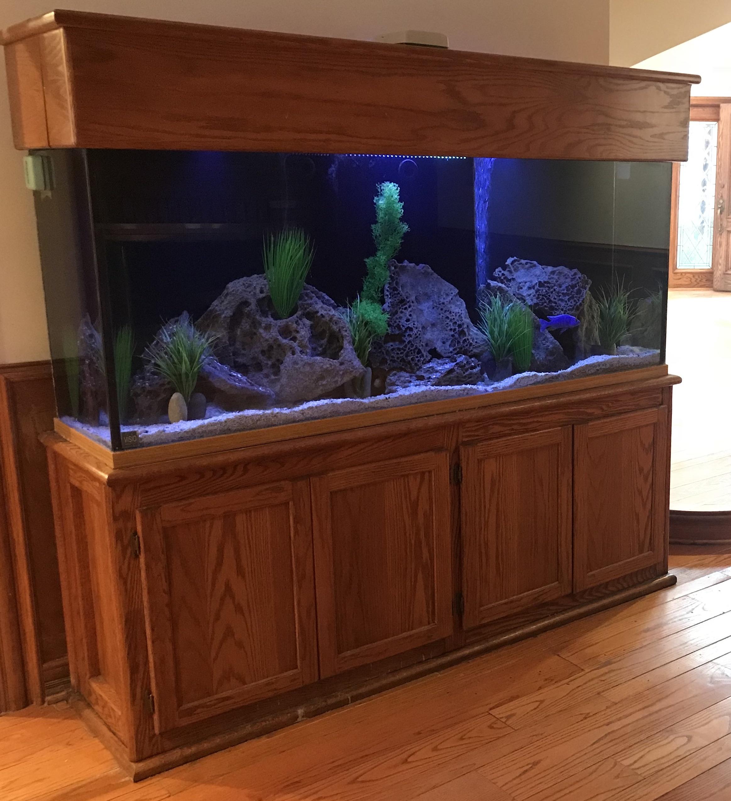 """180 Gallon Aquarium (72""""x24""""x25"""")"""