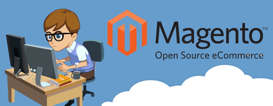 Hire Magento Programmer to Build an eCommerce Website