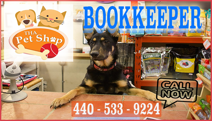 Bookkeeping For Pet Shop Business