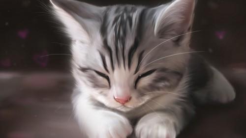 Cats-06-002.jpg