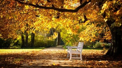 Zlaty-a-smutny-podzim---image4you.cz-001.jpg