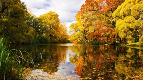 Zlaty-a-smutny-podzim---image4you.cz-026.jpg