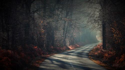 Zlaty-a-smutny-podzim---image4you.cz-111.jpg
