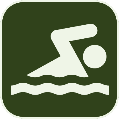 Icon for Swimming activity