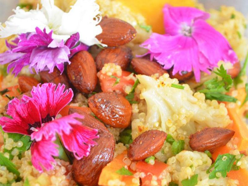 Primeira Primavera Vegana, no Rio (Foto: Reprodução)