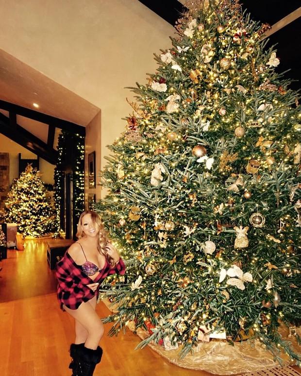 Mariah Carey sostentando sua árvore(Foto: Divulgação)