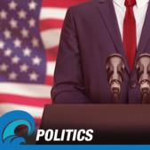 Politics & Elections