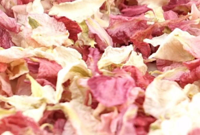 Delphinium Dried Petal Wedding Confetti Eco-Friendly