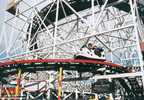Photo of Wild Mouse