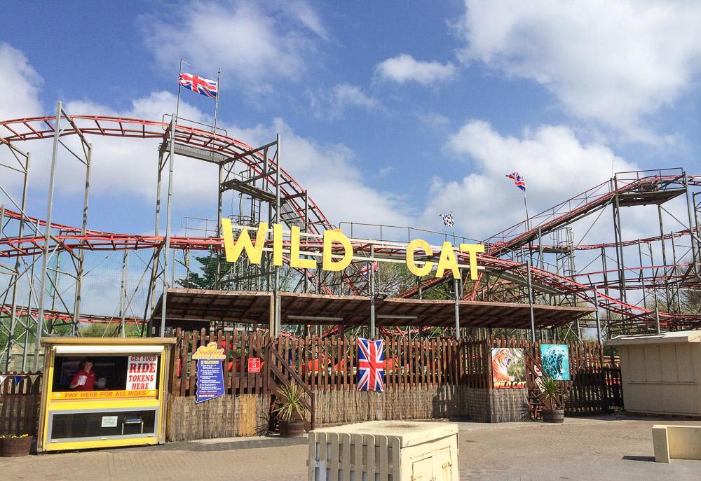 Photo of Wildcat