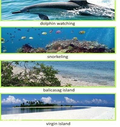Bohol Marine Tour