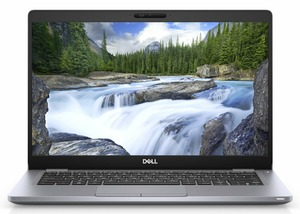 Dell Latitude 5310 (N003L531013UA_UBU)